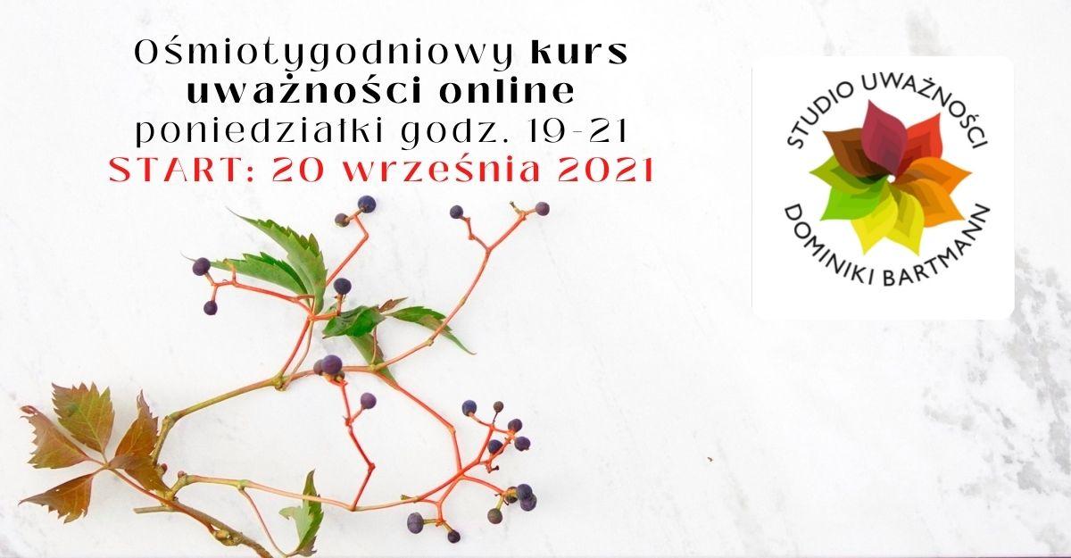 Na stronę online